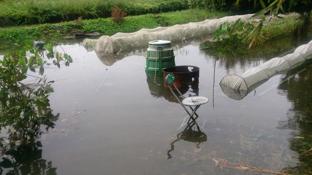 2018年台風21号畑の冠水被害