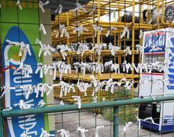 おみくじを結ぶ場所でOKなのか、たくさん結んである 中古タイヤ市場 相模原店自販機コーナー